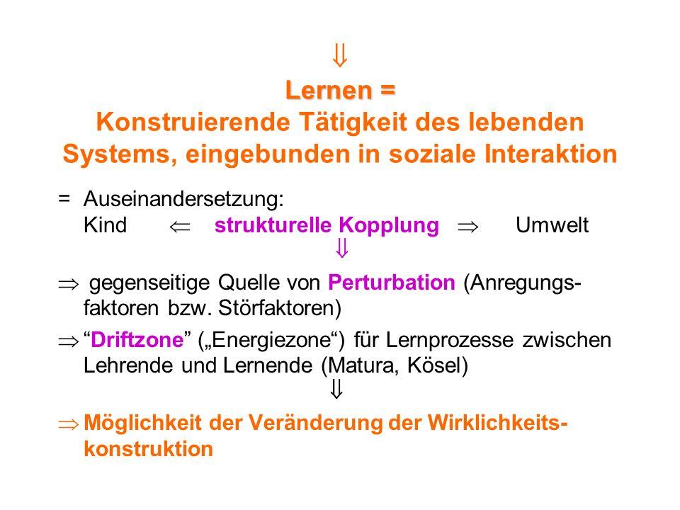  Lernen = Konstruierende Tätigkeit des lebenden Systems, eingebunden in soziale Interaktion