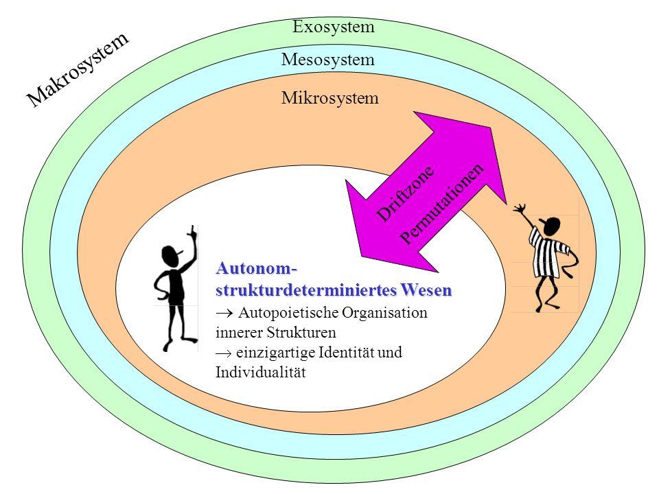 Makrosystem Exosystem Mesosystem Mikrosystem Permutationen Driftzone