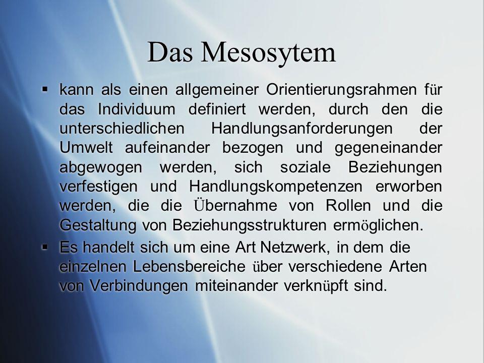 Das Mesosytem