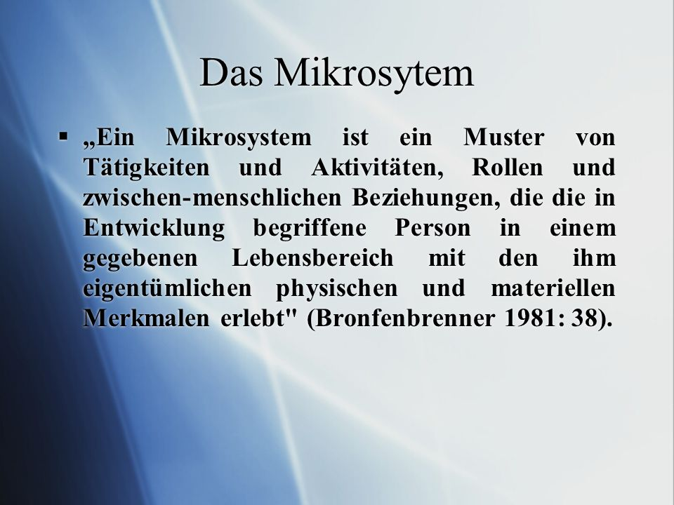 Das Mikrosytem