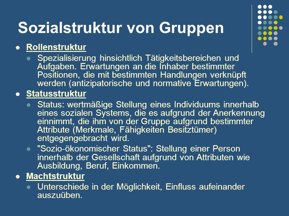 Sozialstruktur von Gruppen