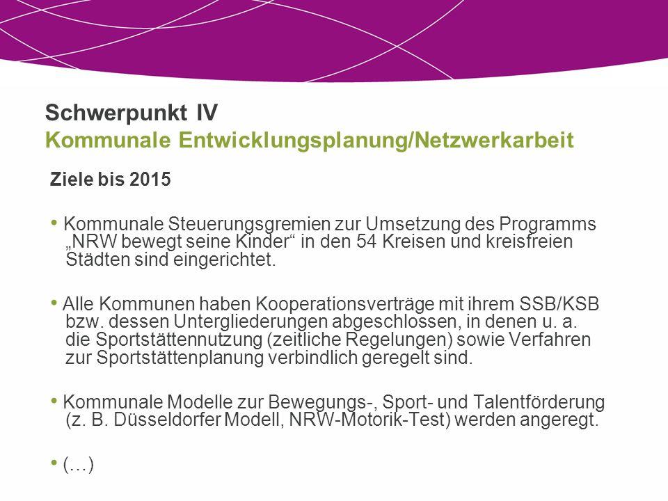 Schwerpunkt IV Kommunale Entwicklungsplanung/Netzwerkarbeit