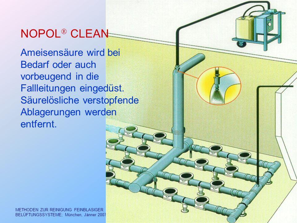 NOPOL CLEAN