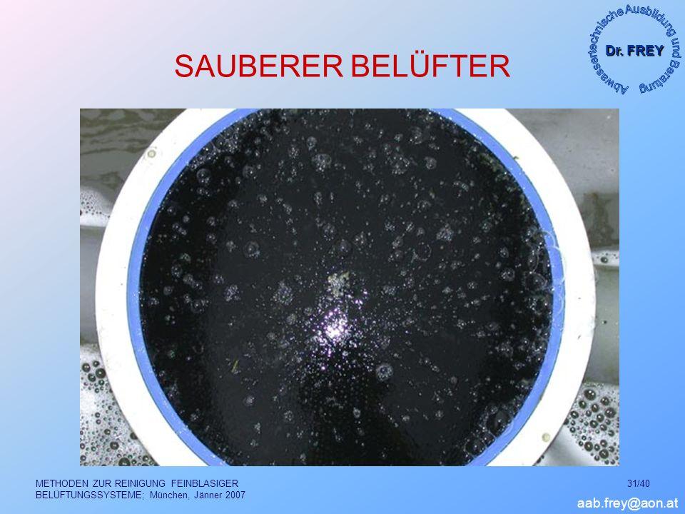 SAUBERER BELÜFTER METHODEN ZUR REINIGUNG FEINBLASIGER BELÜFTUNGSSYSTEME; München, Jänner 2007