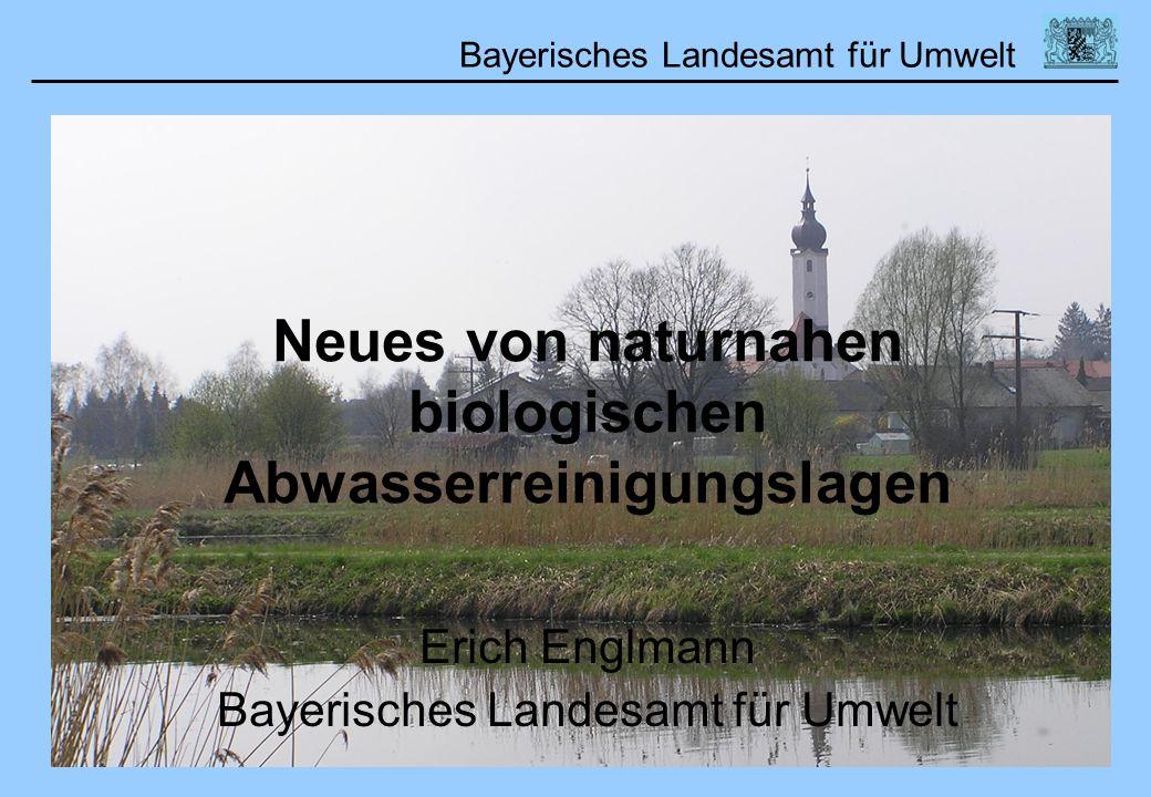 Neues von naturnahen biologischen Abwasserreinigungslagen