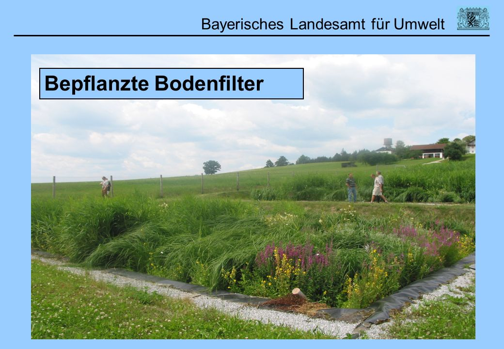 Bepflanzte Bodenfilter