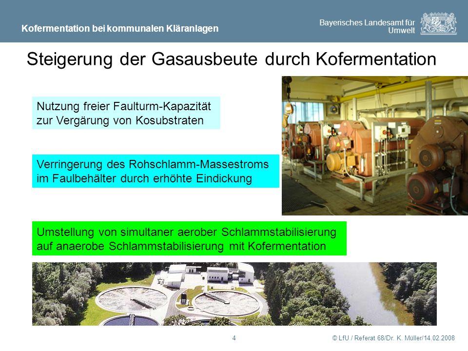 Steigerung der Gasausbeute durch Kofermentation