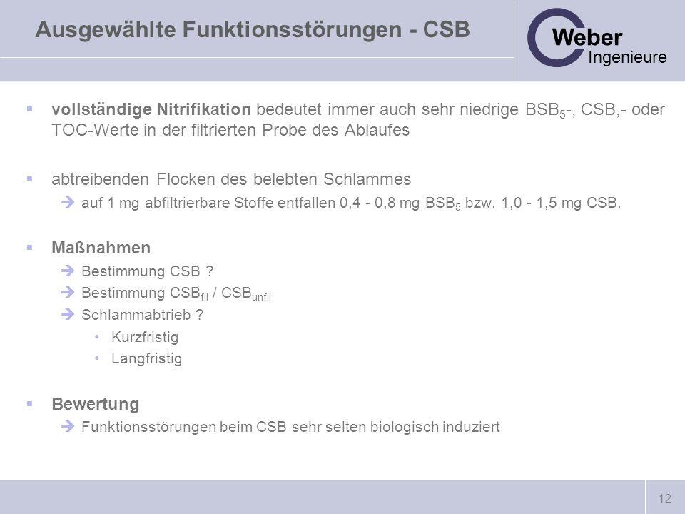 Ausgewählte Funktionsstörungen - CSB