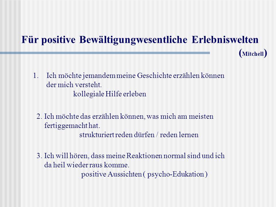 Für positive Bewältigungwesentliche Erlebniswelten (Mitchell)