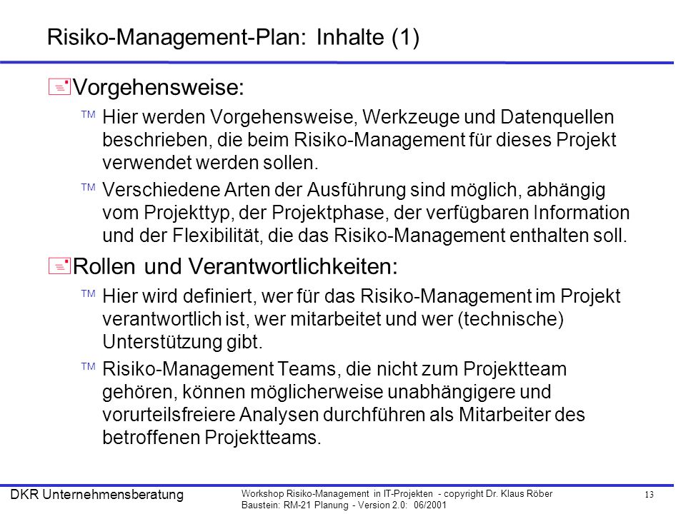 Risiko-Management-Plan: Inhalte (1)