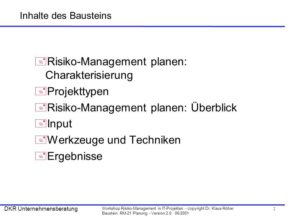 Risiko-Management planen: Charakterisierung Projekttypen