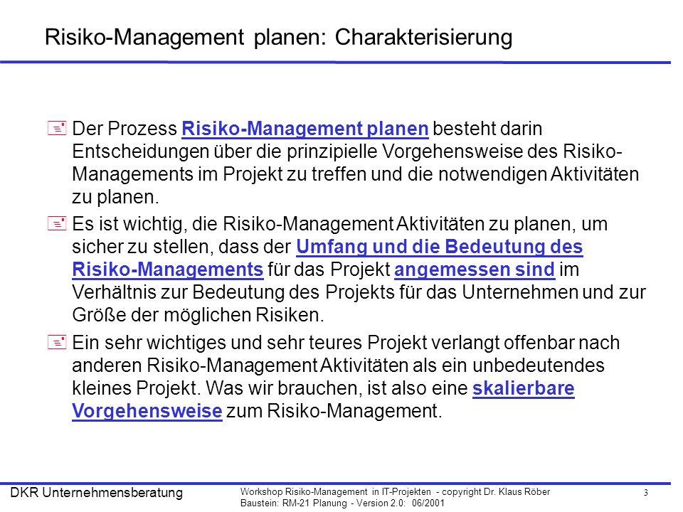 Risiko-Management planen: Charakterisierung