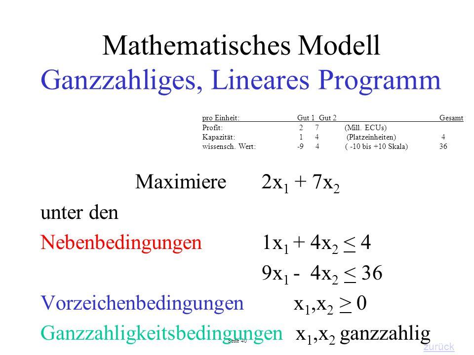 Mathematisches Modell Ganzzahliges, Lineares Programm