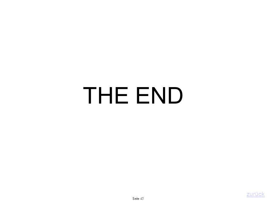 THE END Seite 45 zurück
