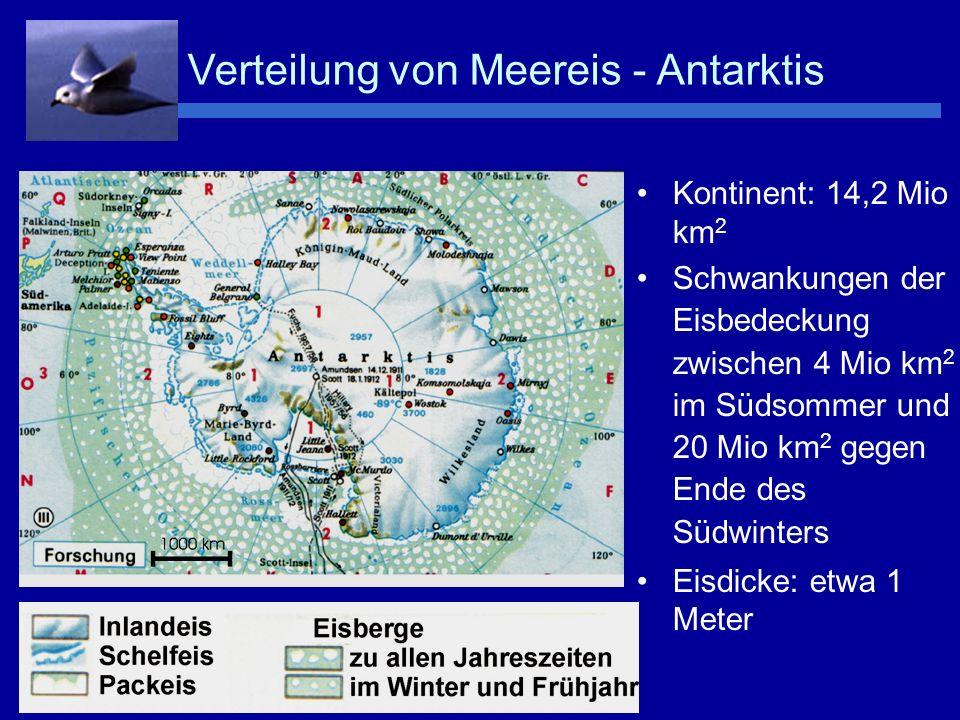 Verteilung von Meereis - Antarktis