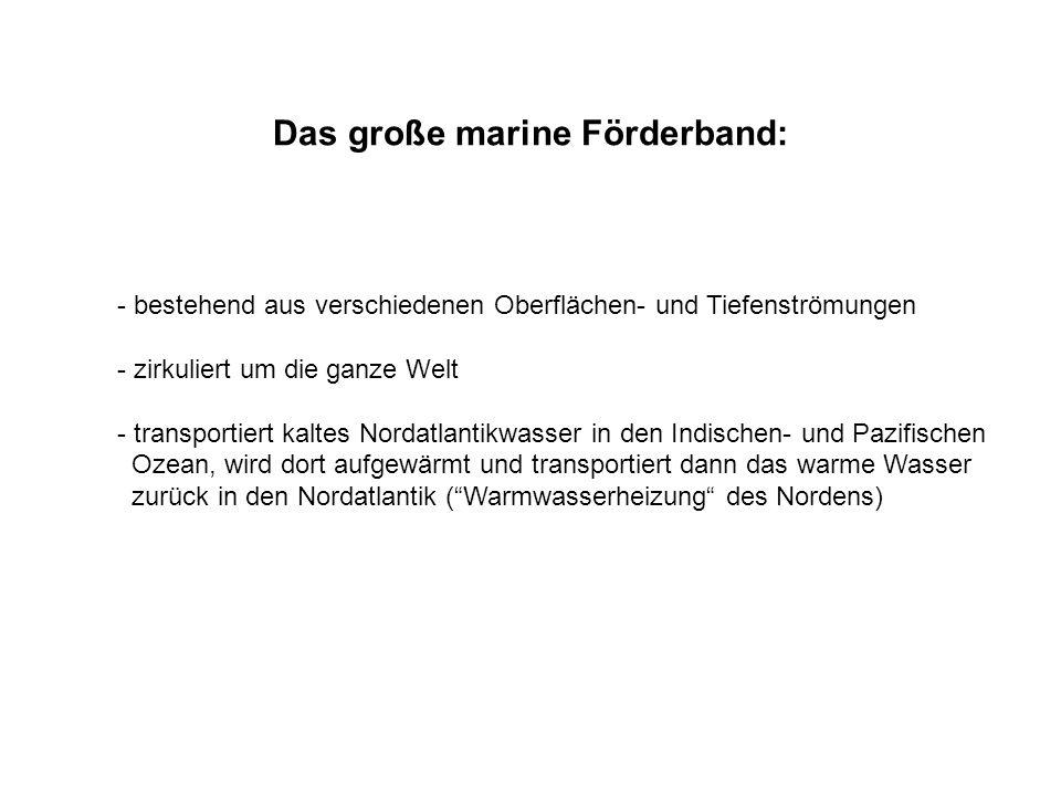 Das große marine Förderband: