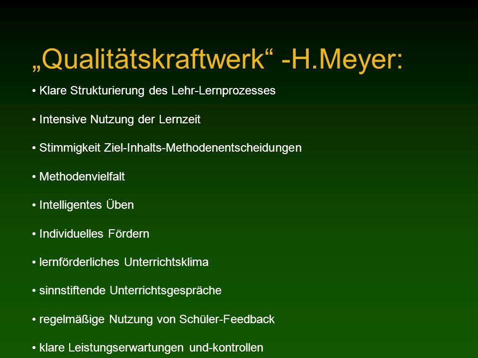"""Qualitätskraftwerk -H.Meyer:"