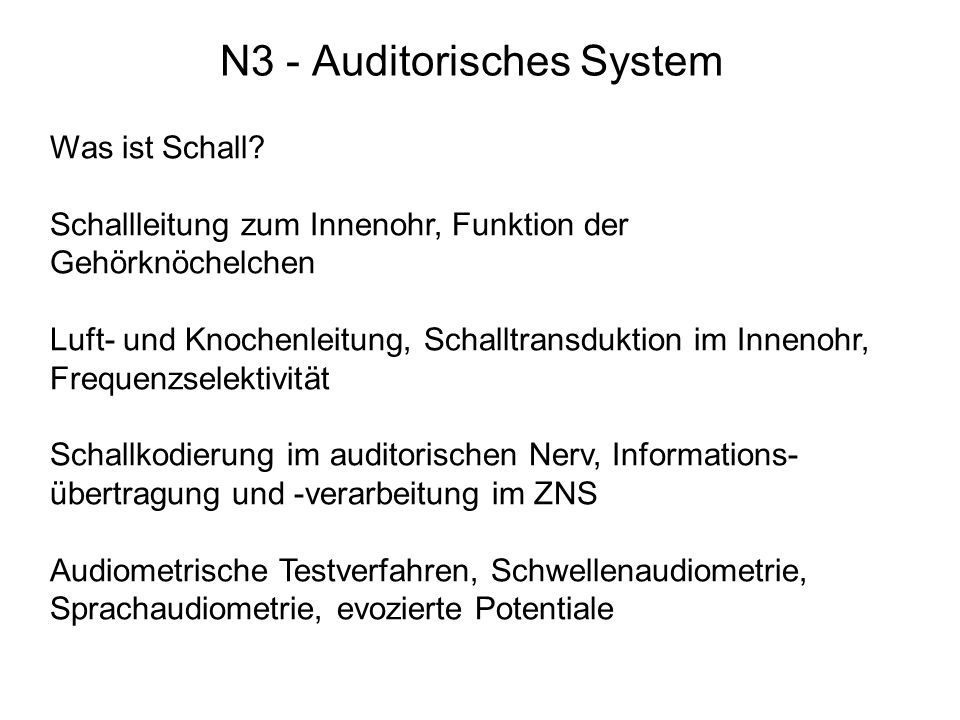 N3 - Auditorisches System