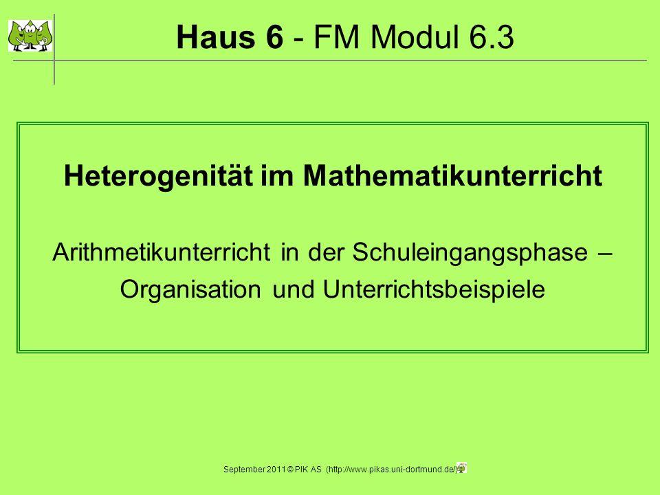 Haus 6 - FM Modul 6.3 Heterogenität im Mathematikunterricht