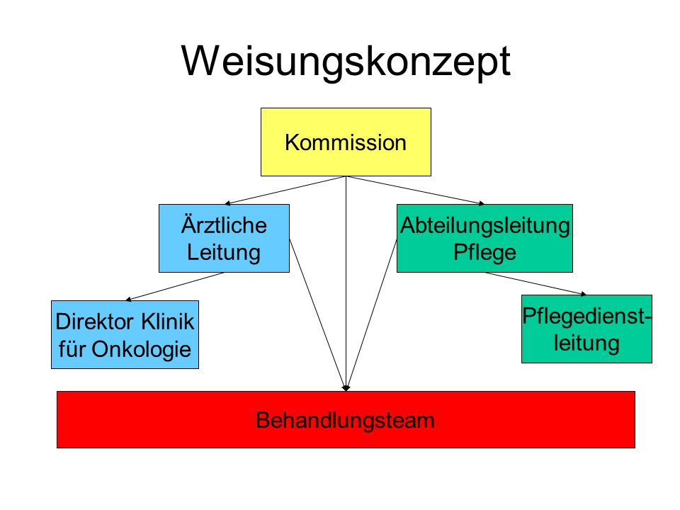 Weisungskonzept Kommission Ärztliche Leitung Abteilungsleitung Pflege