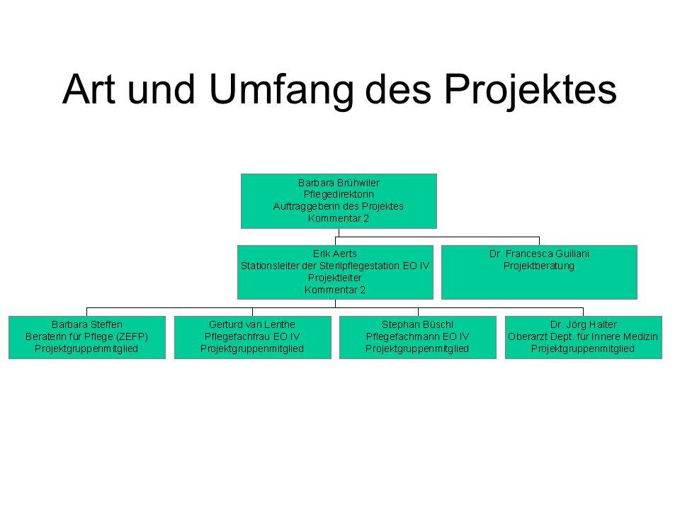 Art und Umfang des Projektes