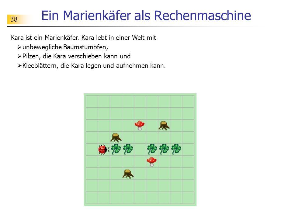 Ein Marienkäfer als Rechenmaschine