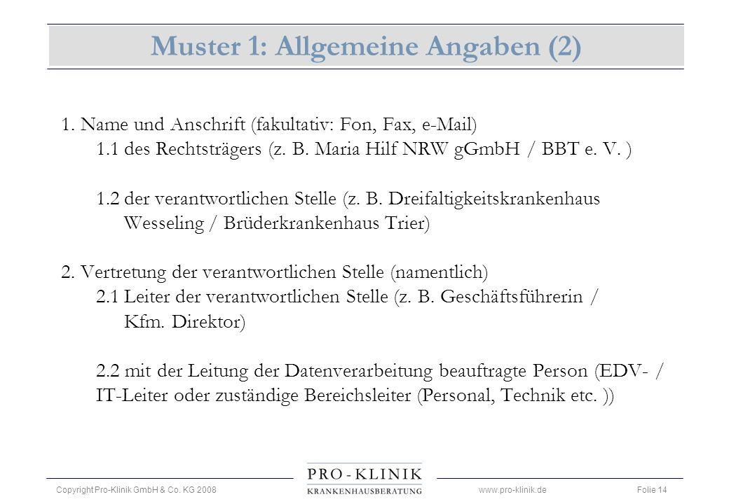 Muster 1: Allgemeine Angaben (2)