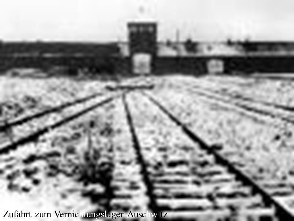 Zufahrt zum Vernichtungslager Auschwitz