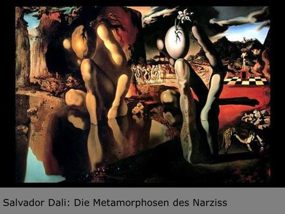 Salvador Dali: Die Metamorphosen des Narziss