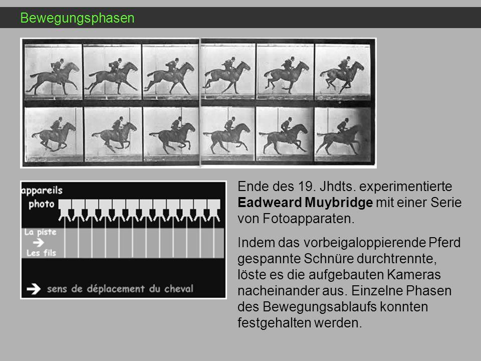 Bewegungsphasen Ende des 19. Jhdts. experimentierte Eadweard Muybridge mit einer Serie von Fotoapparaten.
