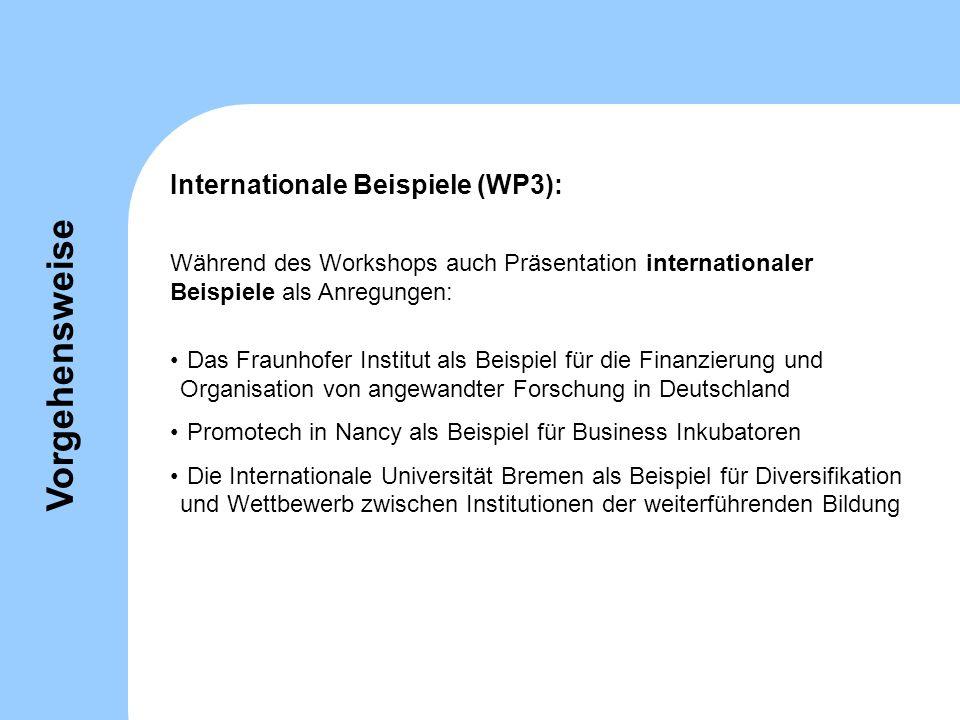 Vorgehensweise Internationale Beispiele (WP3):