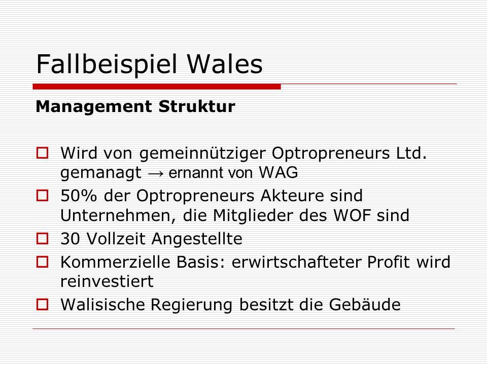 Fallbeispiel Wales Management Struktur