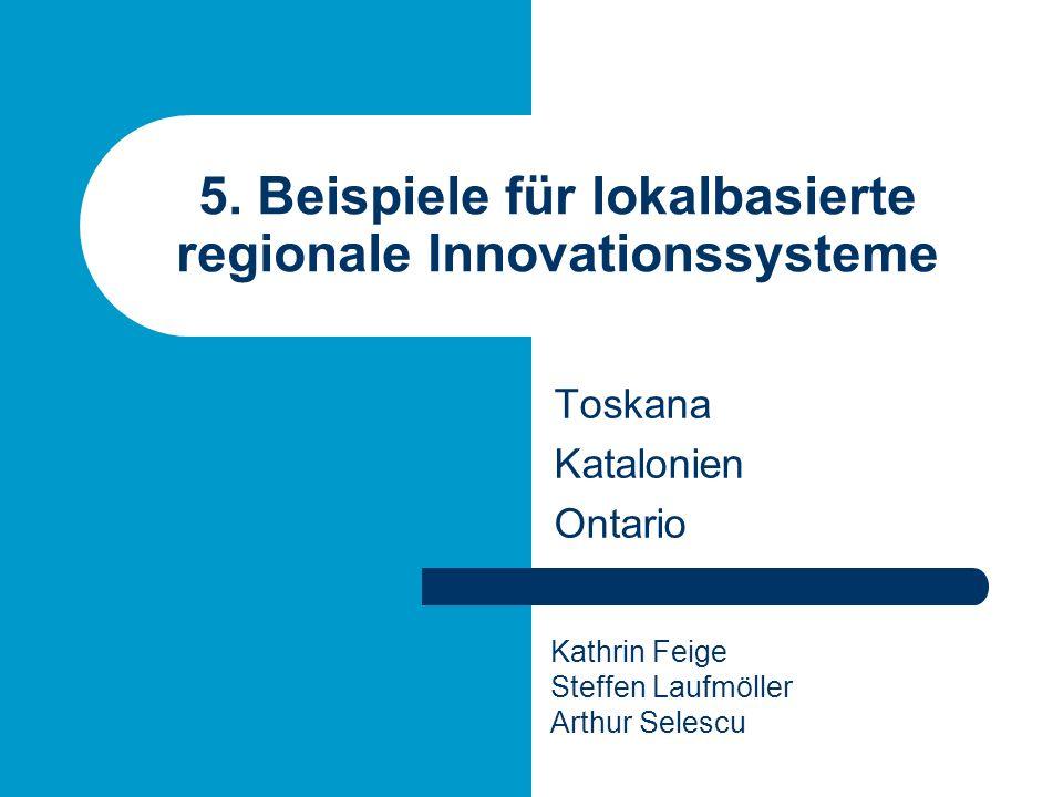 5. Beispiele für lokalbasierte regionale Innovationssysteme