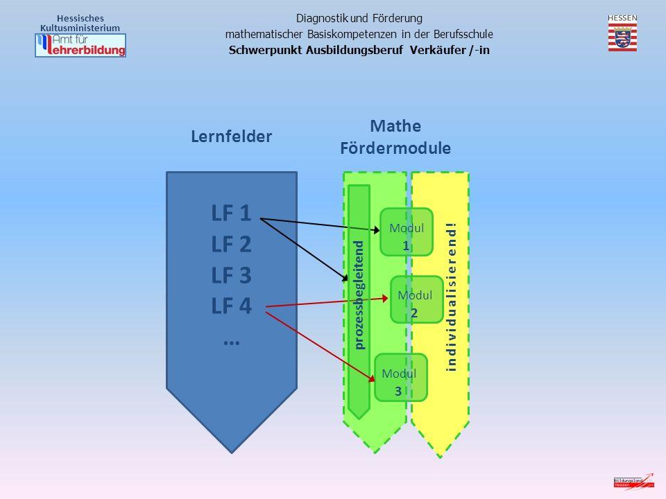 LF 1 LF 2 LF 3 LF 4 … Mathe Fördermodule Lernfelder