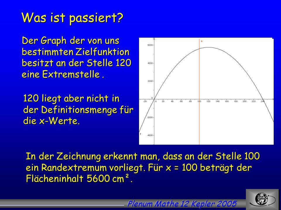 Was ist passiert Der Graph der von uns bestimmten Zielfunktion besitzt an der Stelle 120 eine Extremstelle .