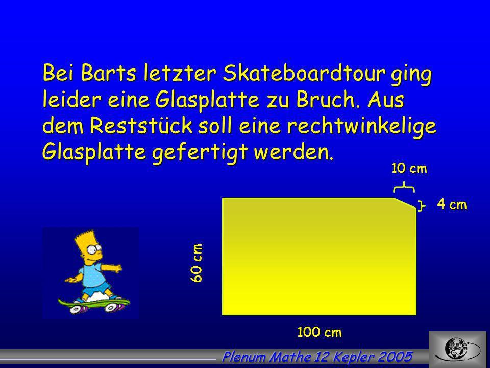 Bei Barts letzter Skateboardtour ging leider eine Glasplatte zu Bruch