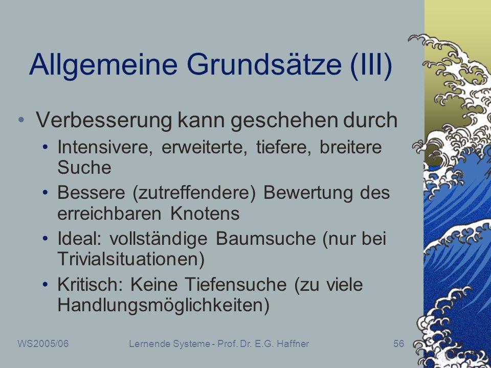 Allgemeine Grundsätze (III)