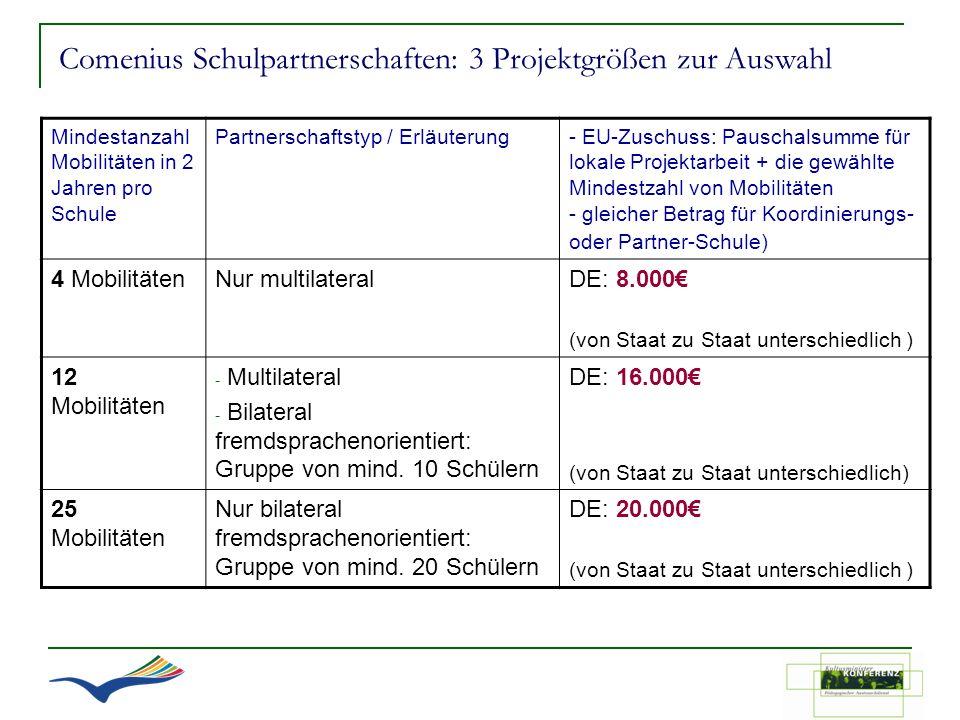 Comenius Schulpartnerschaften: 3 Projektgrößen zur Auswahl