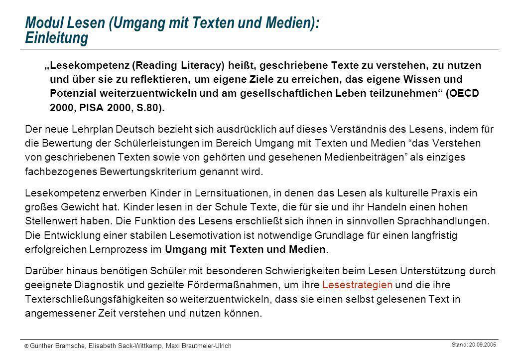 Modul Lesen (Umgang mit Texten und Medien): Einleitung
