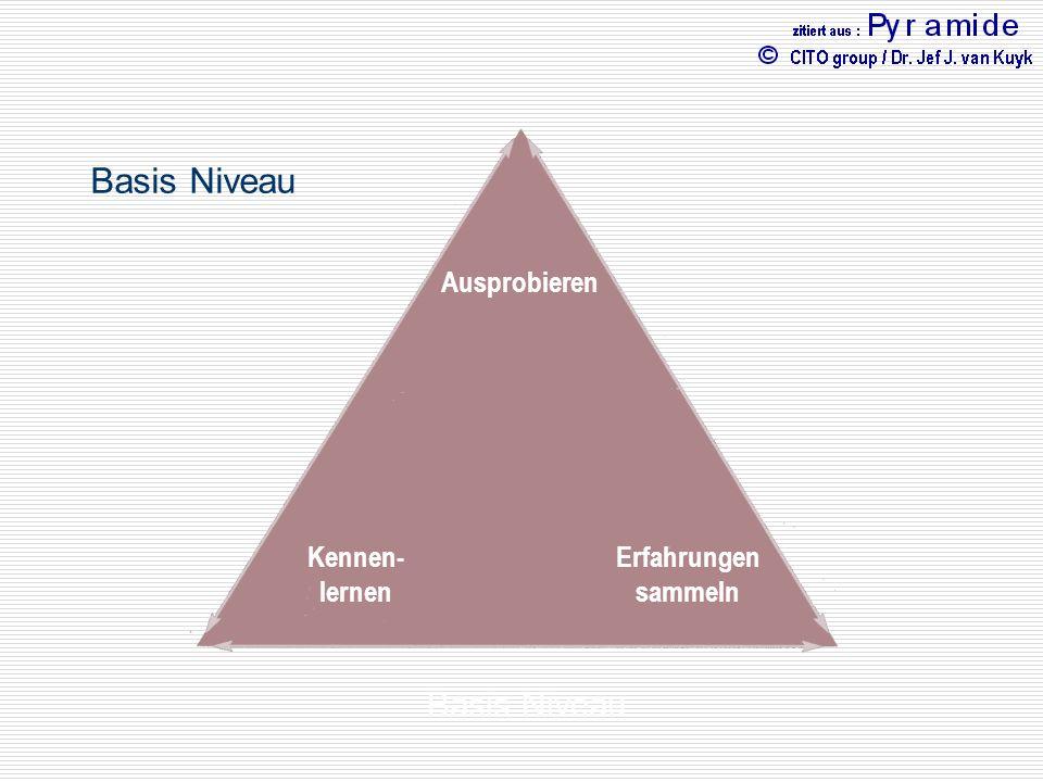 Basis Niveau Basis Niveau Kognitive Intelligenz Emotionale Physische
