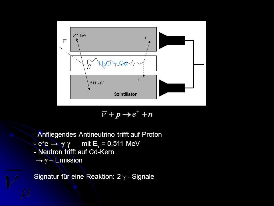Anfliegendes Antineutrino trifft auf Proton