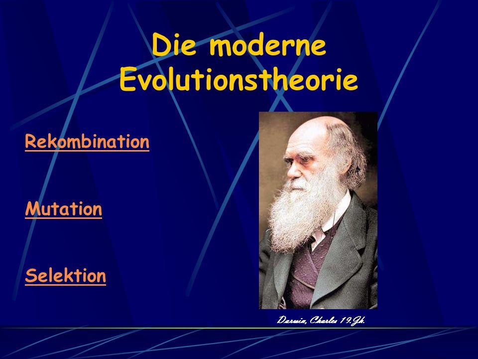 Die moderne Evolutionstheorie