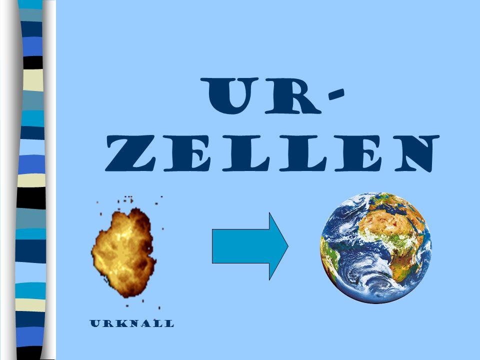 UR-ZELLEN urknall