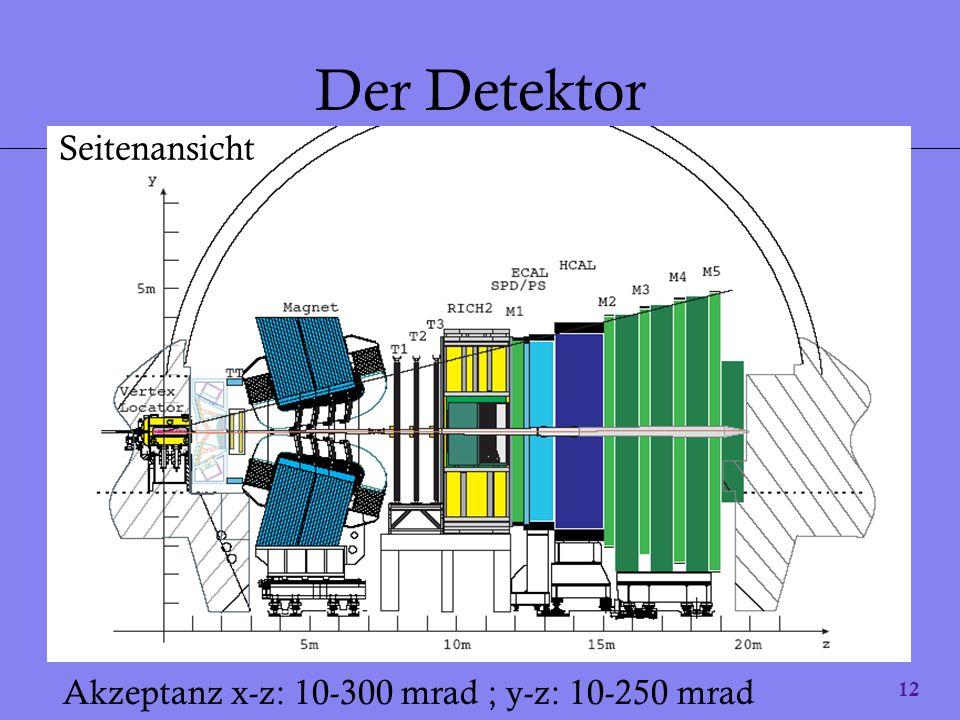 Der Detektor Seitenansicht