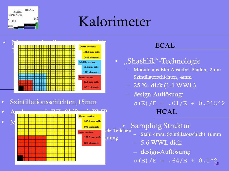 "Kalorimeter ""Shashlik -Technologie Sampling Struktur"