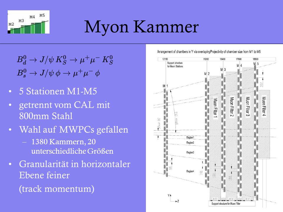 Myon Kammer 5 Stationen M1-M5 getrennt vom CAL mit 800mm Stahl
