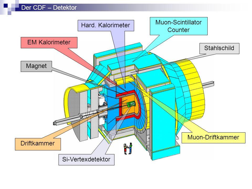 Muon-Scintillator Counter