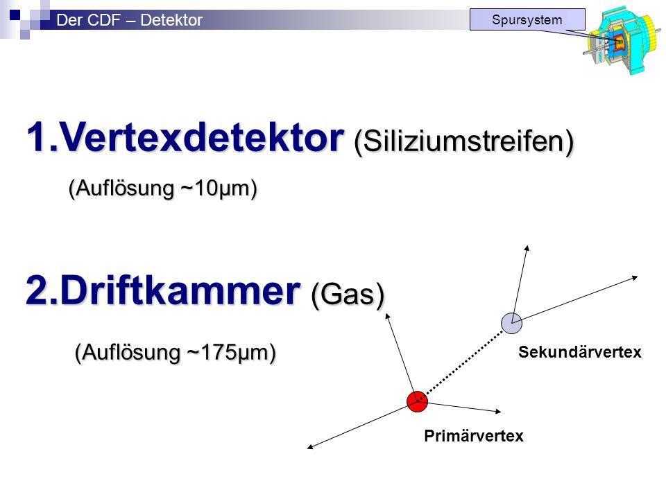 Vertexdetektor (Siliziumstreifen)