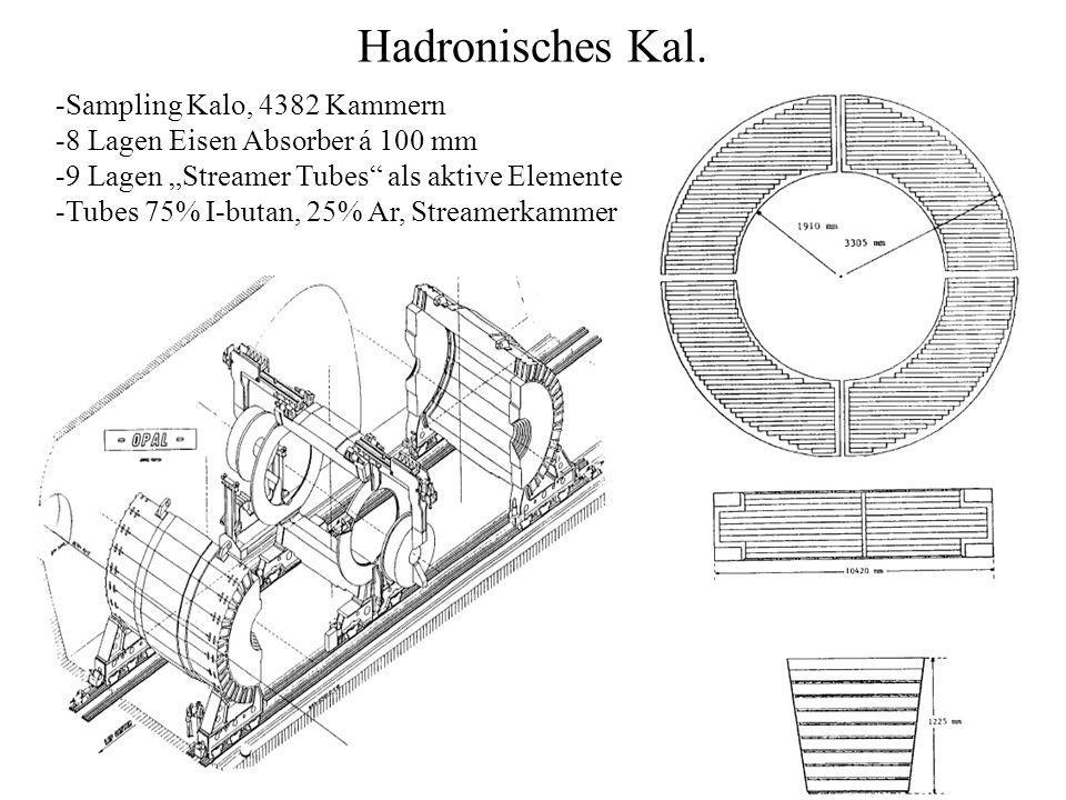 Hadronisches Kal. Sampling Kalo, 4382 Kammern