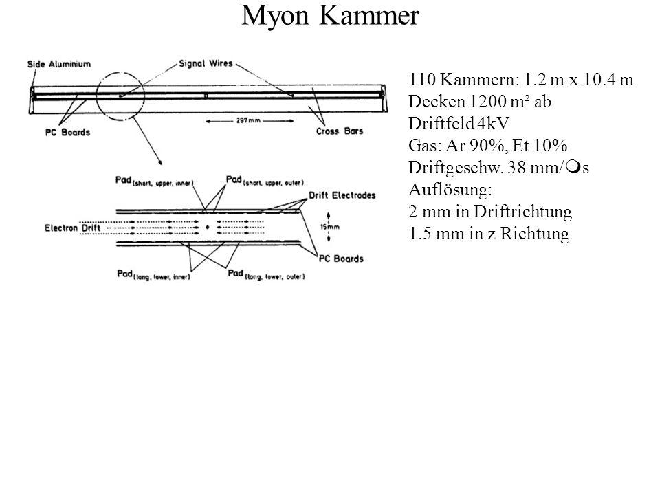 Myon Kammer 110 Kammern: 1.2 m x 10.4 m Decken 1200 m² ab